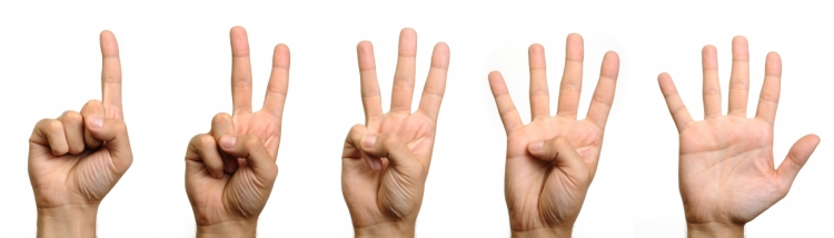 1-2-3-4-5-fingers-on-hand11